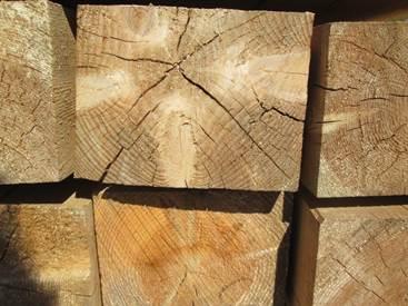 Какие пороки у древесины?